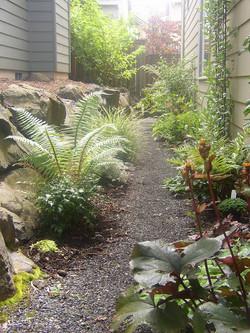 Side yard-shade