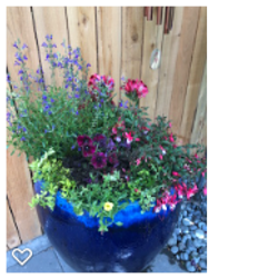 Patio Container