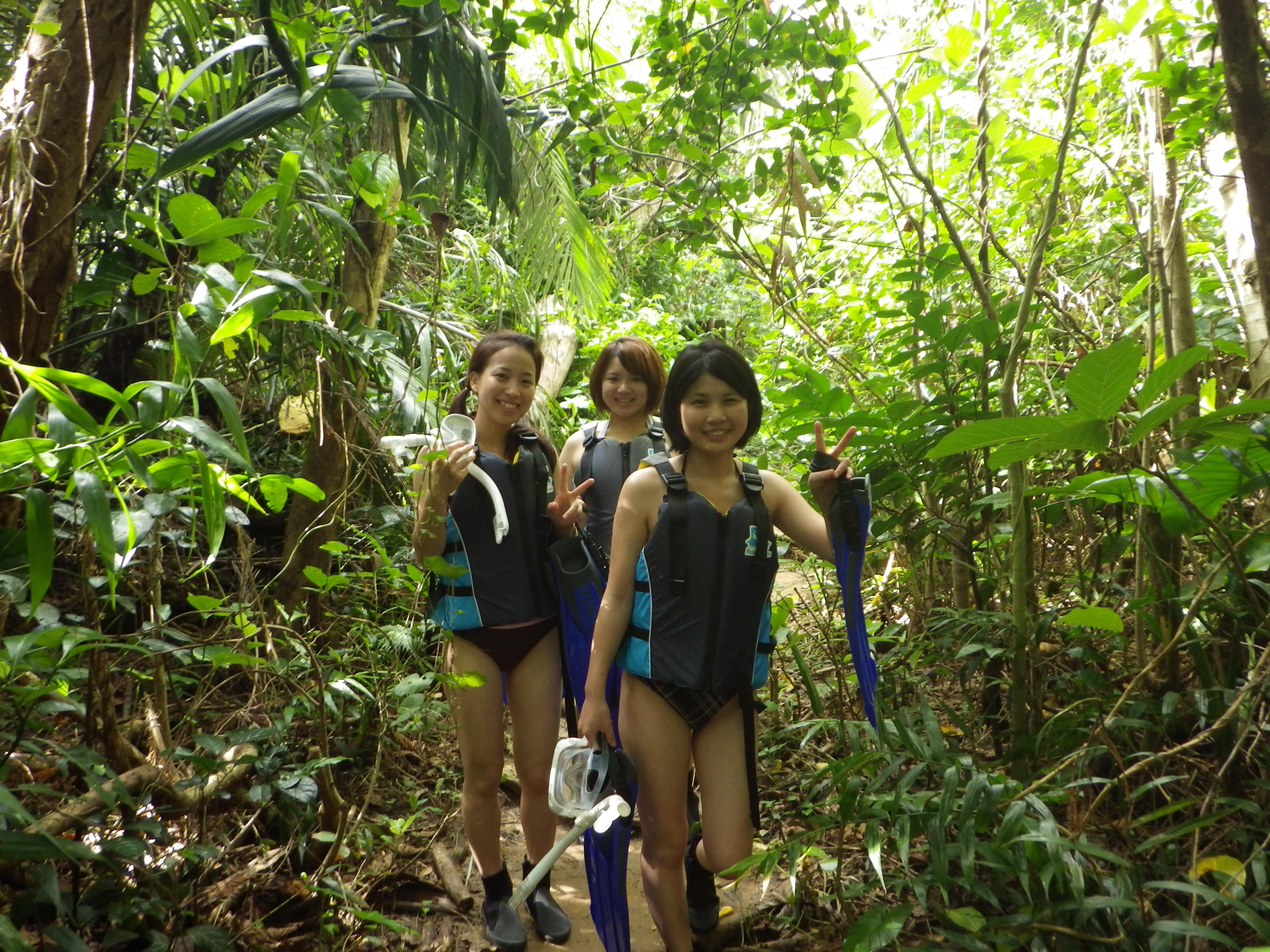 石垣島の亜熱帯のジャングルを進んで行くと