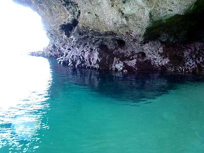 石垣島 青の洞窟シュノーケリングツアー