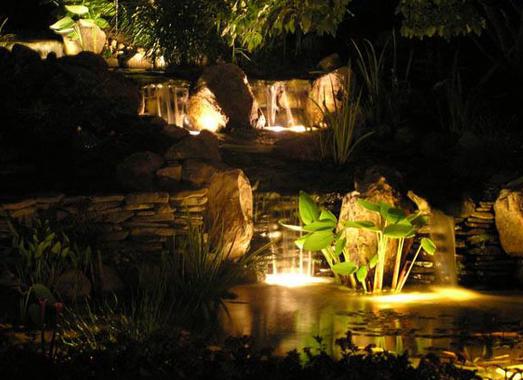koi-pond-lighting2.png
