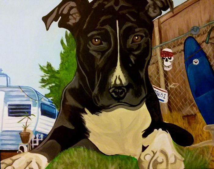 dons dog2.jpg