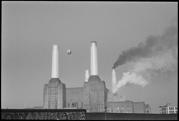 Carinthia West, Pink Floyd, Animals, 1973, Print, Photograph