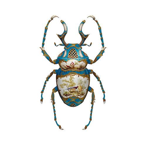 Sèvres Dicranocephalus Wallichii