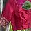 Thumbnail: Swarnachari dual shaded Red