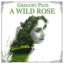 A WILD ROSE.jpg