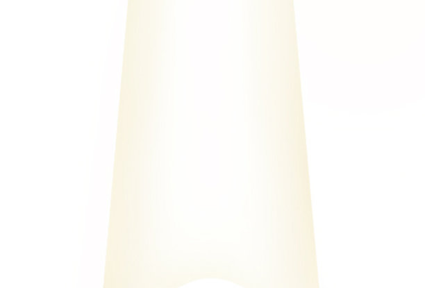 White Nail Tips 250pc Box