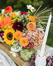 Flowers from wollam .jpg