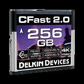 Delkin 256 GB trans.png