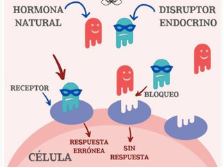 Toxinas en alimentos y productos de aseo