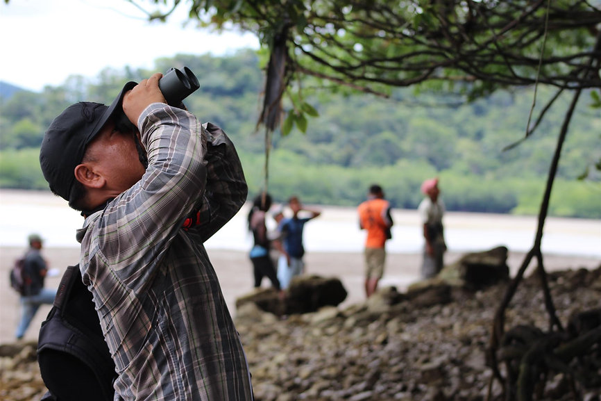 Chenier birdwatching.JPG