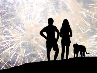 5 steps to keep your dog safe during fireworks