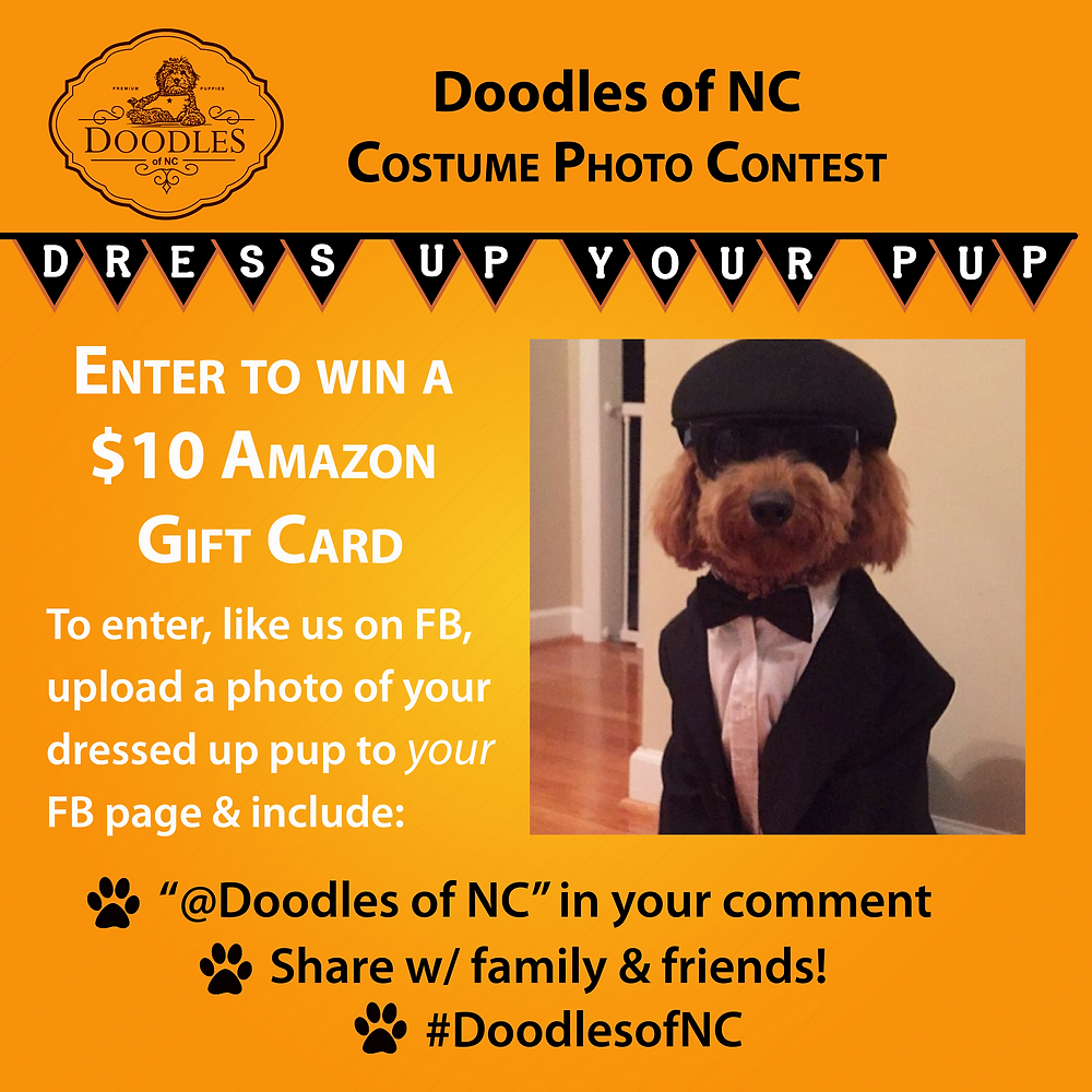 Doodles of NC Breeder Sponsored Dog Halloween Photo Contest