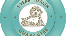Doodles of NC Puppy Health Guarantee