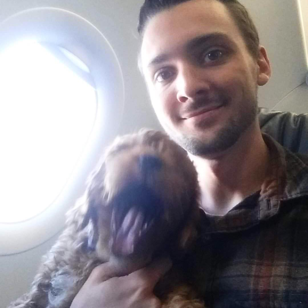 Goldendoodle Puppy Travel Companion