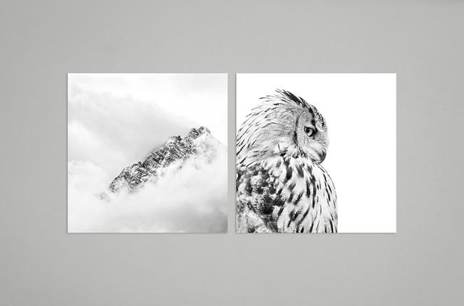Impression noir et blanc sous verre - Montagne enneigée