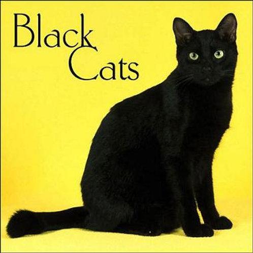 Black Cats  150g