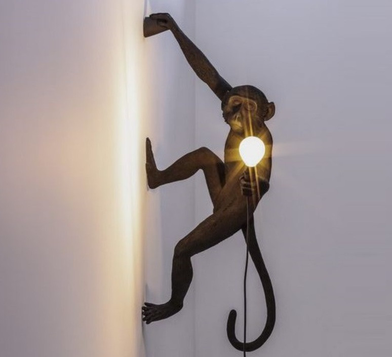 monkey-hanging-right_marcantonio-raimond