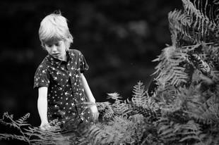 Nursery Natural Examples_31.JPG