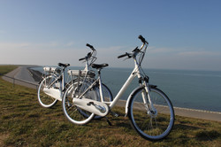"e-bike ""Stella"""