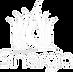 Logo_espaço_Sinergia_transparente.png.pn