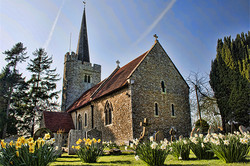 Church Daffs 170949_m