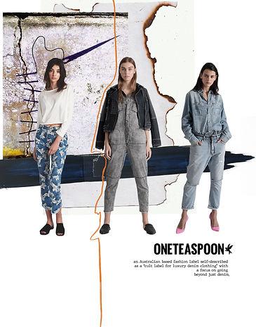 oneteaspoon process.jpg