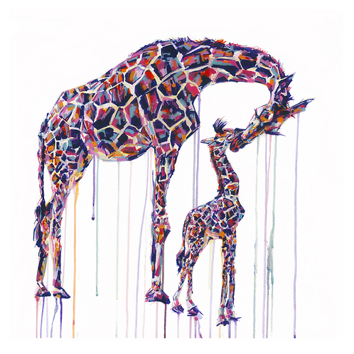 Giraffes - Limited Edition Print
