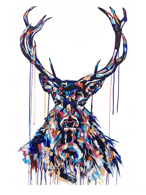 Stag - Limited Edition Print