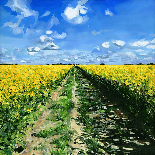 Yellow Trail - Limited Edition Print