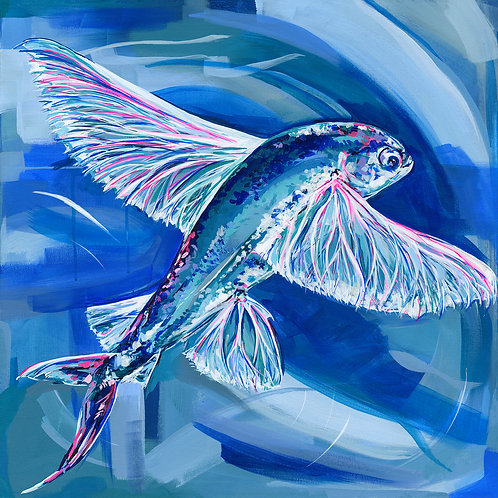 Flying Fish - Limited Edition Print