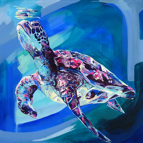 Sea Turtle - Limited Edition Print