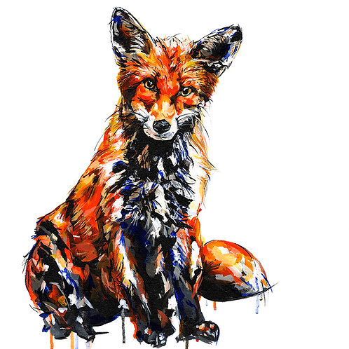Fox - Limited Edition Print