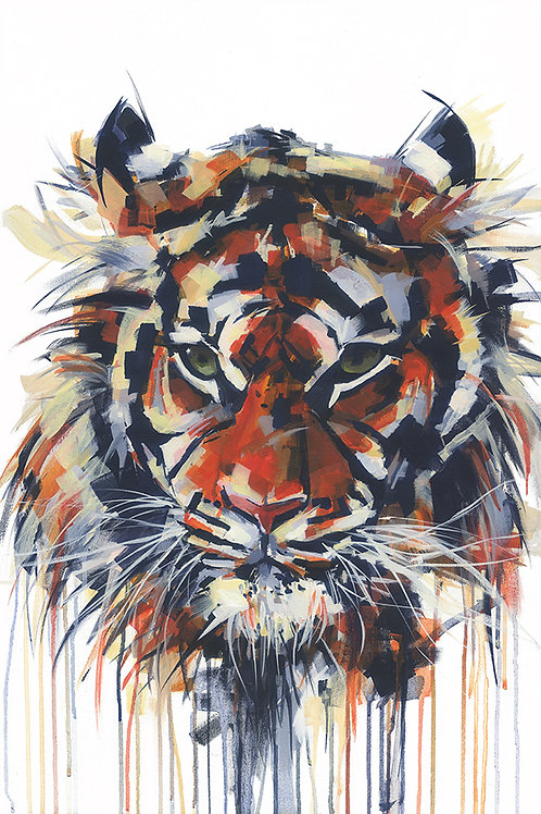 Tiger - MOUNTED Limited Edition Print
