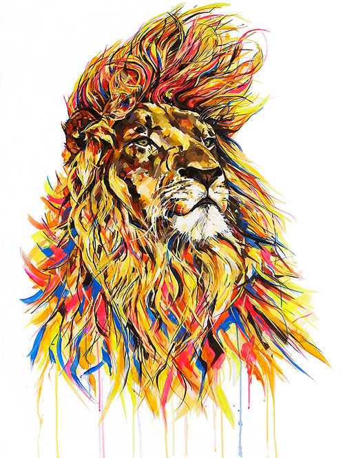 Lion - Limited Edition Print