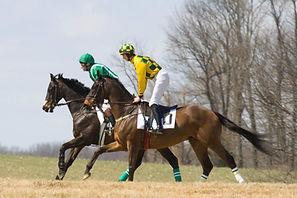 Elkridge-Harford Point-to-Point (c) Bob Keller