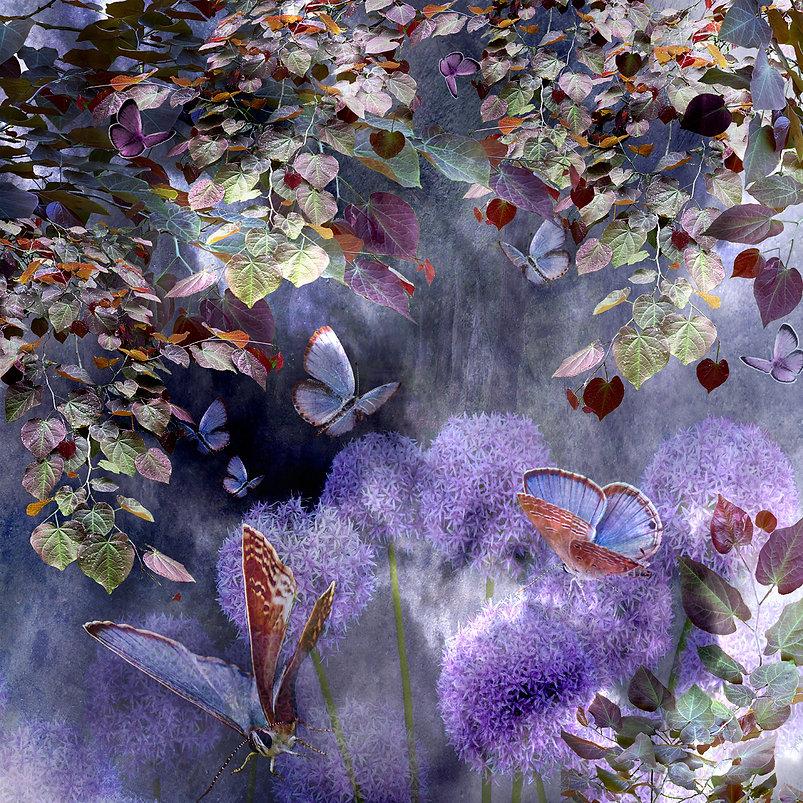 MiamiBlue Butterflies.jpg
