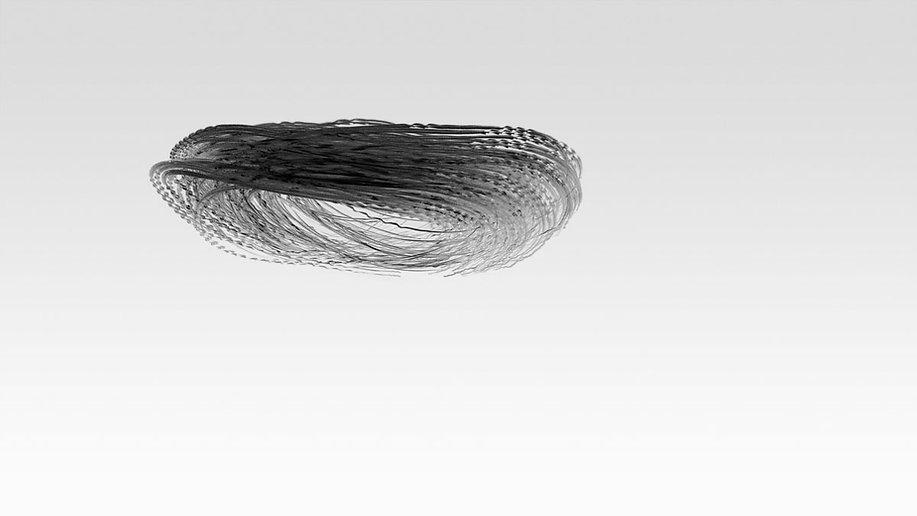 Ornithography_#123.jpg