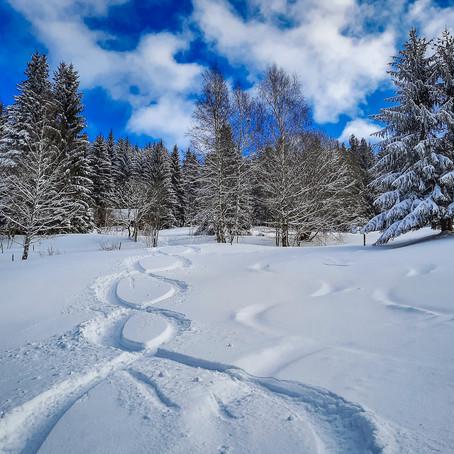 Skitour am Auersberg