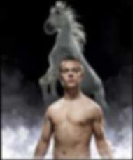 equus 1.jpg