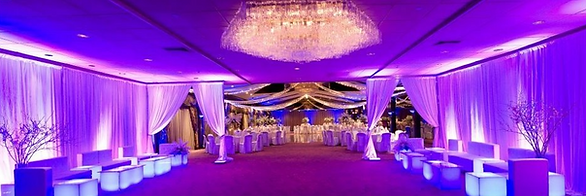 Wedding drapery dcor centerpieces vases ceiling treatment alter decor rental wedding linen rental wedding drapery rental dallas wedding decor junglespirit Images