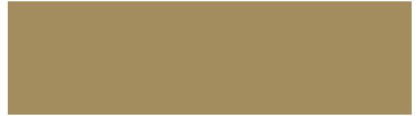 WDP logos-kopia2a.png