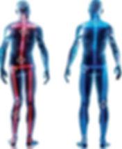 postura avaliação postural santa cecília são paulo
