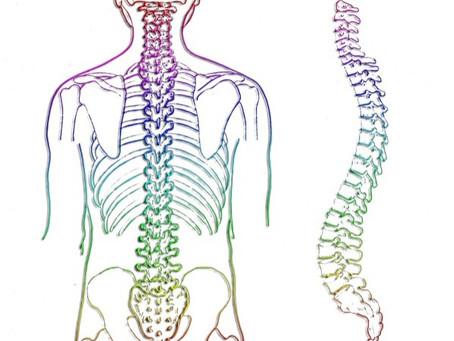 Uma coluna saudável deve ter mobilidade e estabilidade