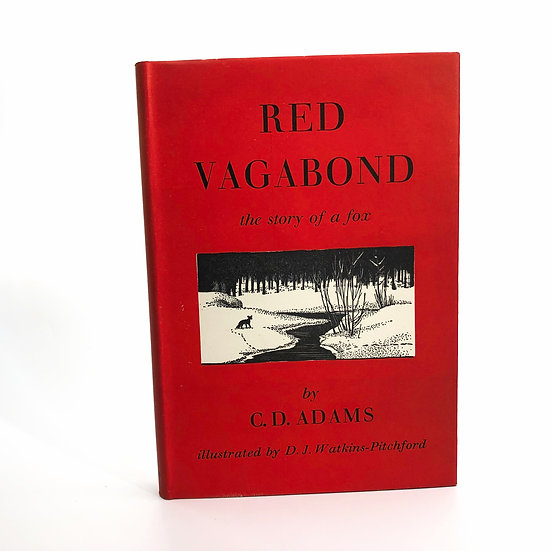 Red Vagabond by C.D. Adams / B.B. 1st / 1st 1951