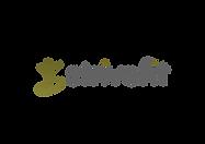 strivefit Logo png.png