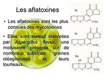 Les+aflatoxines+Les+aflatoxines+sont+les