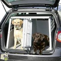 caisses chiens.jpg