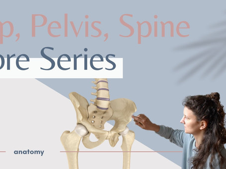 The difference between your hip and your pelvis and why it matters. (Core Series)