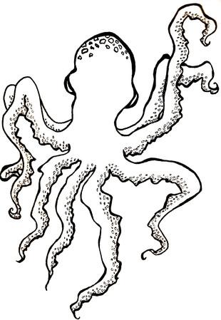 Oliver Octopus